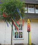 Ein neuer Baum und ein Vogelhaus für den Schulhof